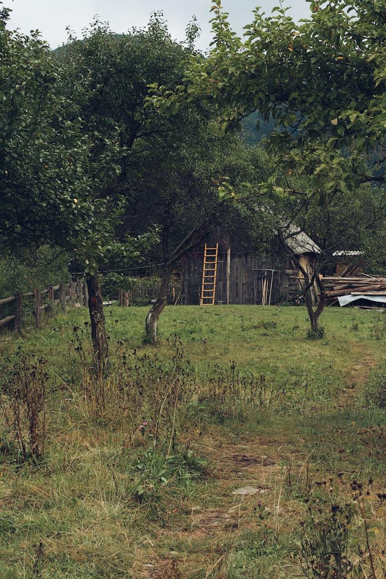 Карпаты Украина отдых в деревне