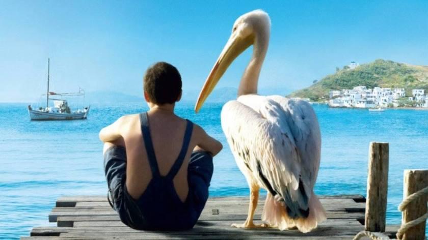 мальчик и пеликан, море, горы, жизнь на острове, мальчик дружит с птицей