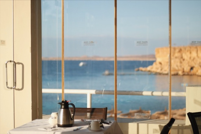 египет, путешествие, отдых, лето, турист, турагенство, отель, полет, шарм, красное море, кораллы