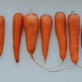 carrot, health, wellness, summer, sun, juice, breakfast, морковь, загар, здоровье, фреш, лето, завтрак