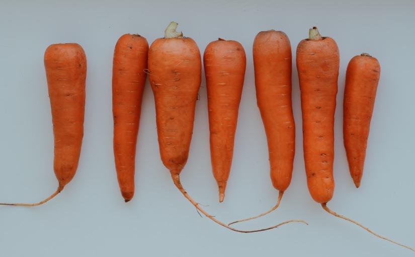 Любовь-морковь и красивыйзагар